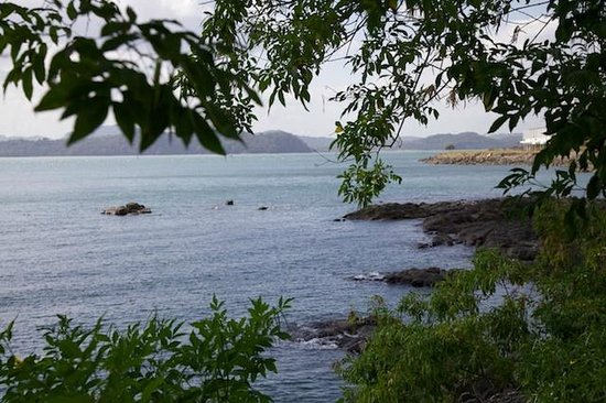 Punta Culebra Nature Center: View of Panama Bay from the trail