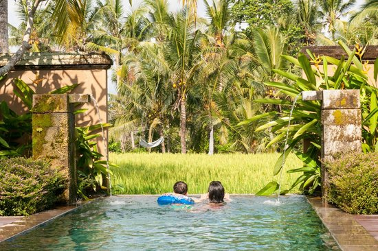 The Chedi Club Tanah Gajah, Ubud, Bali – a GHM hotel: Our pool - in the pool villa