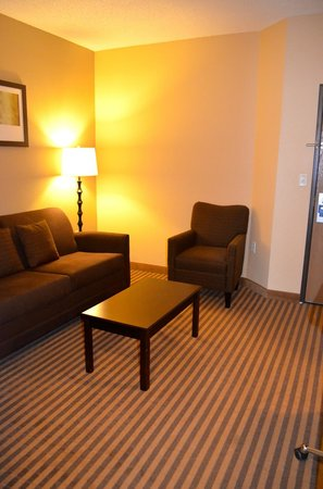 Comfort Suites DFW Airport: Suite Living Area