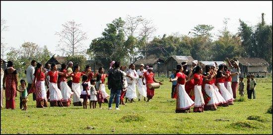 Dibru Saikhowa National Park: Mising tribal dancers during Aliailigang festival