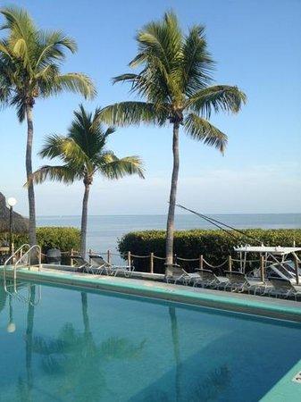 Harbor Lights Motel: pool very clean