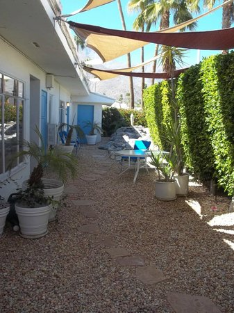 Palm Springs Rendezvous: The quiet shady spot around back by the water feature