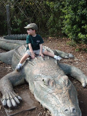 Jackson, MS: He loved this alligator!