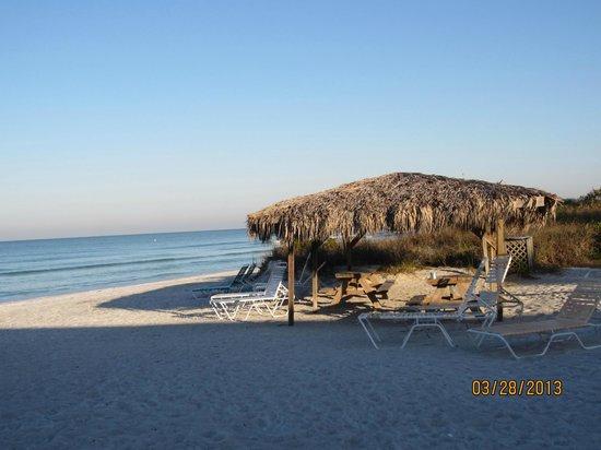 Gulf Beach Resort Motel: GBRM12