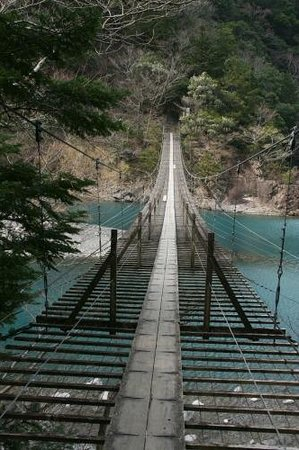 Yume no Tsuribashi Suspension Bridge: 2