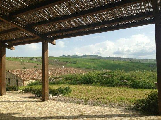 Terre di Corleone: 2