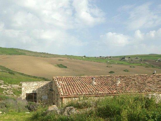 Terre di Corleone: 6