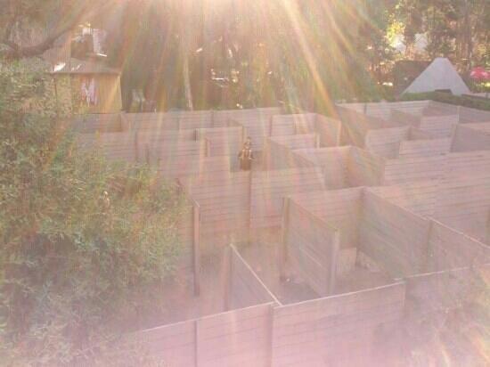 The Maze, home of Outback Splash : maze of light
