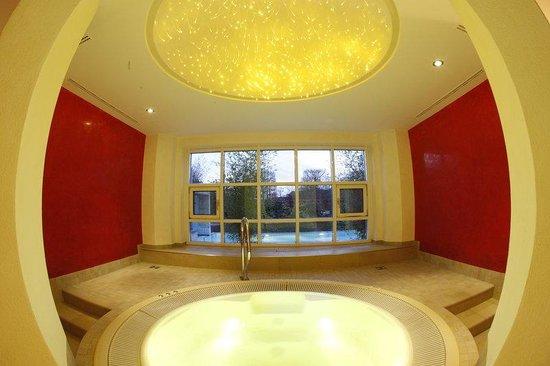 spa relaxing room picture of dorint park hotel bremen bremen tripadvisor. Black Bedroom Furniture Sets. Home Design Ideas