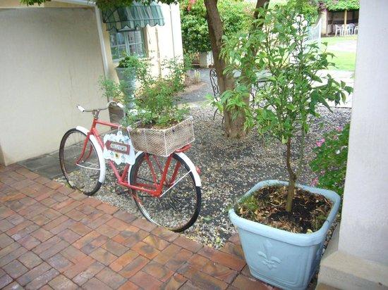 Avondrust Guest House and B&B : Impressionen vom Garten 2