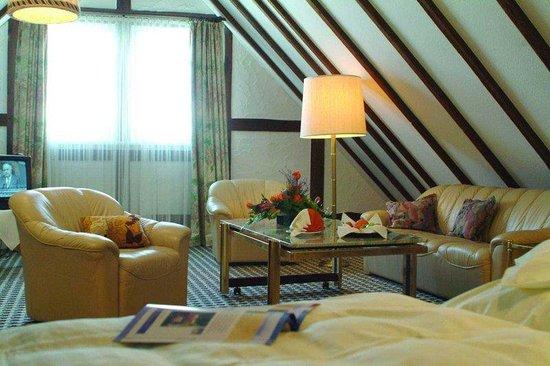 Sauerland Alpin Hotel: Suite