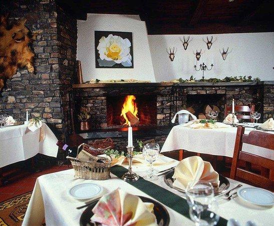 Sauerland Alpin Hotel: Restaurant