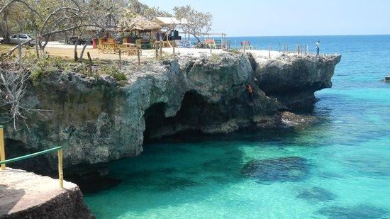 3 dives jamaica negril excursions for sale