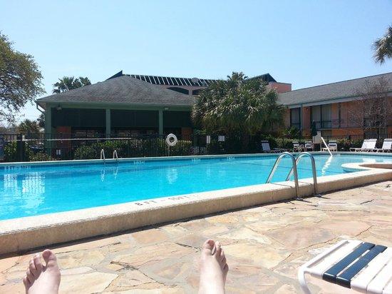 Best Western Charleston Inn: pool side view