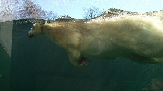 joys åbyhøj zoo i Sjælland