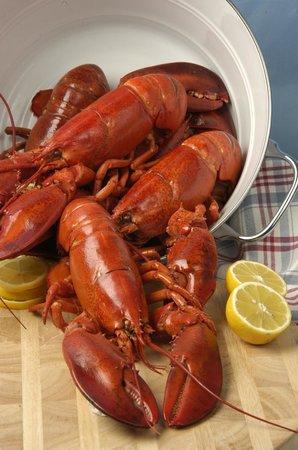 Red Lobster : Lobster
