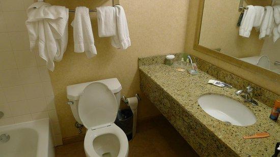 Wyndham Boston Beacon Hill : Кусочек мыла и гадкий шампунь
