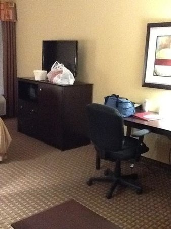 Comfort Suites Golden Isles Gateway Brunswick: tv-desk