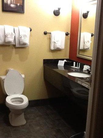 Comfort Suites Golden Isles Gateway Brunswick : bath