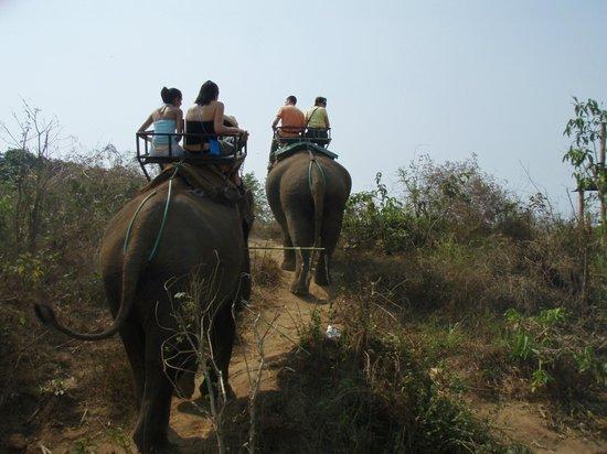 B.M.P. Residence: Elephant riding