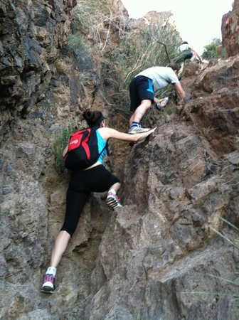 Flying E Ranch: Climbing to the top