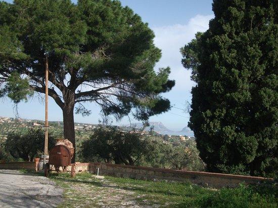 Case Morello: Panorama