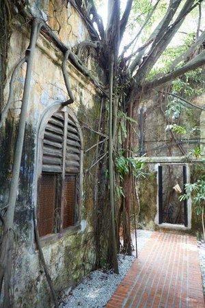 Sekeping Kong Heng: Rear courtyard.