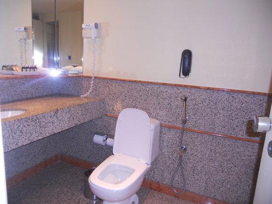 Sofitel Rio de Janeiro Ipanema: Bathroom