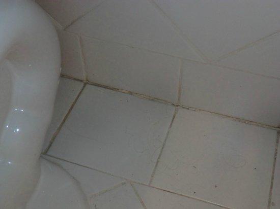 The Barbizon: Badezimmerboden (bei Übernehme des Apartments)