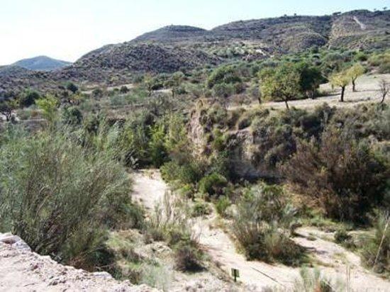 Cuevas de Sorbas: Umgebung