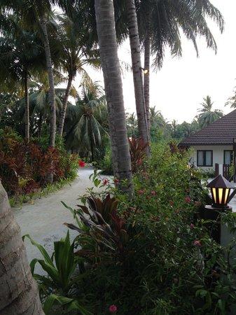 Lily Beach Resort & Spa: interno