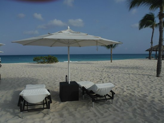 Picture Of Bucuti Tara Beach Resort