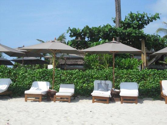 SALA Samui Choengmon Beach Resort : Belle plage