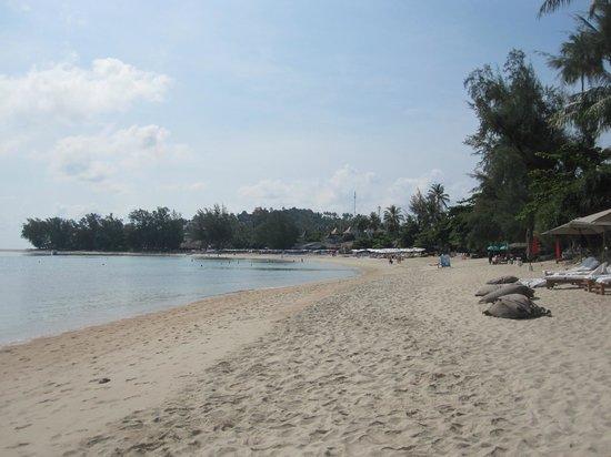SALA Samui Choengmon Beach Resort : la plage devant l'hôtel