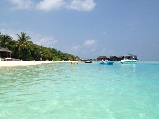 Lily Beach Resort & Spa: l'aqua