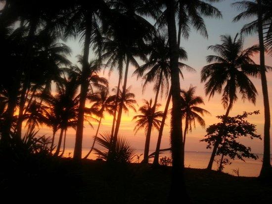 Mimosa Resort & Spa: neben der Anlage - zwischen dem Resort Koh Samui