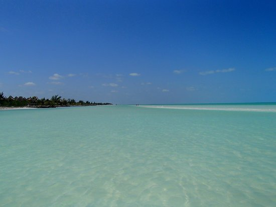 Hotel Villas Delfines: Sandbank Holbox