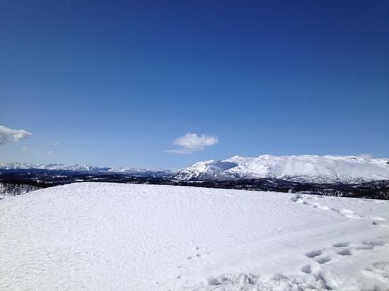 Rauland Hogfjellshotell: Rauland høyfjellshotell, utsikt fra solterassen