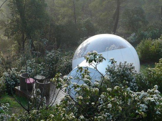 Attrap'Reves: la bulle