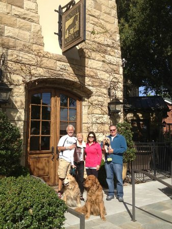 Furry Friends Welcome at Hotel Cheval