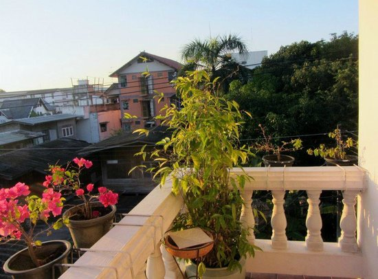 Red Hibiscus Guesthouse: top view balcony