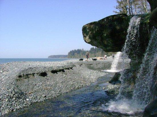 Straitview Ridge B&B: SANDCUT BEACH