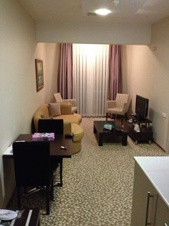 Beymarmara Suite Hotel: Living Room