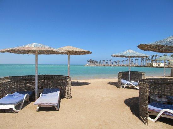 Festival Shedwan Golden Beach Resort: Пляж