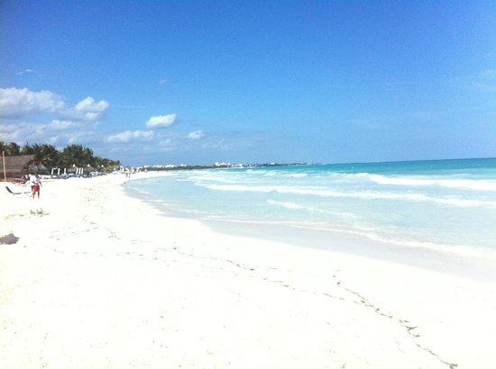 Catalonia Playa Maroma: vista della spiaggia