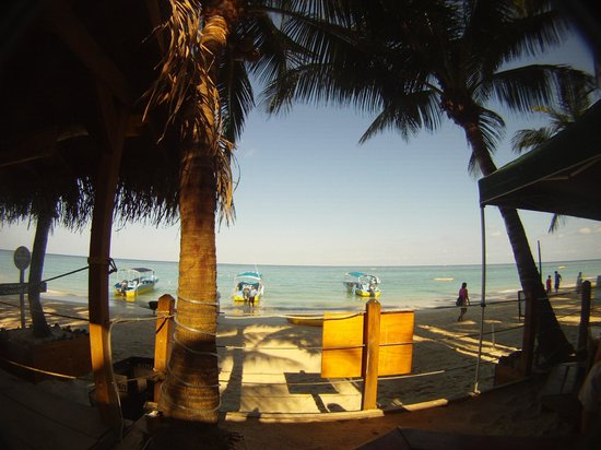 Bananarama Beach and Dive Resort: View from the Thirsty Turtle
