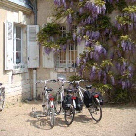 Chateau du Breuil: Biking