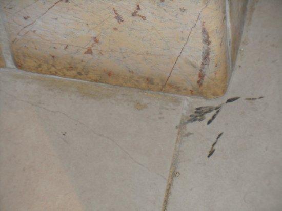 Grand Bahia Principe Jamaica: Bathroom floor needs to be redone!