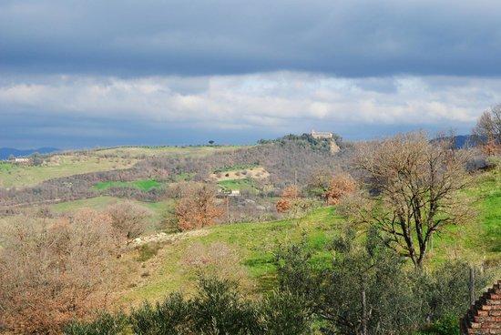 Agriturismo Ampugnano: Panorama