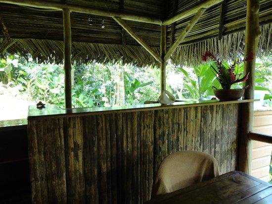 Monkey Tree Casitas: La cocina
